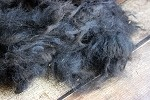 Raw Black Alpaca Fleece for Spinning - Chloe